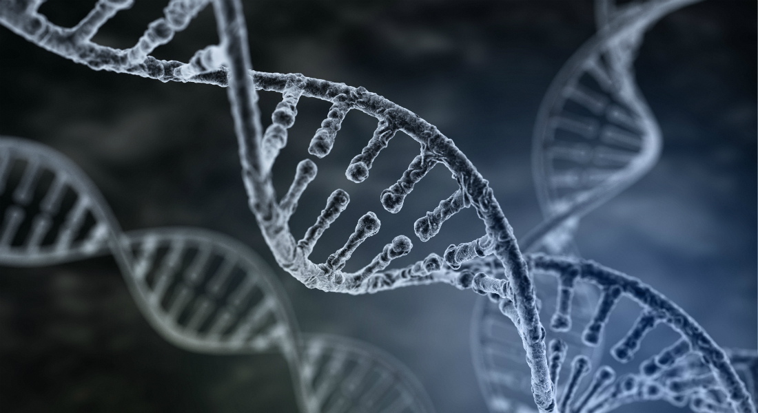 DNA Discovery Can Lead to New Types of Cancer Drugs