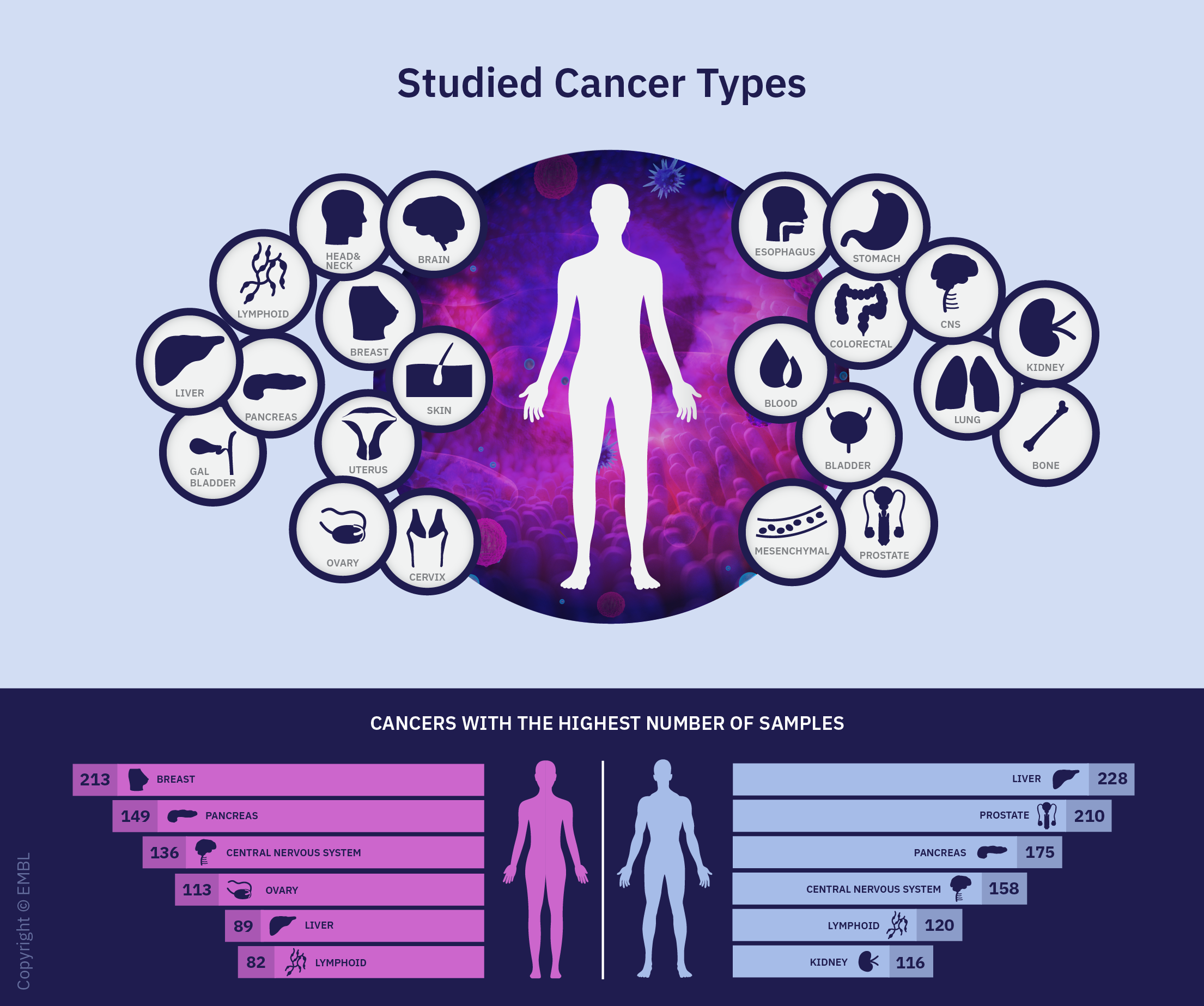 Infographic showing studied cancer types.
