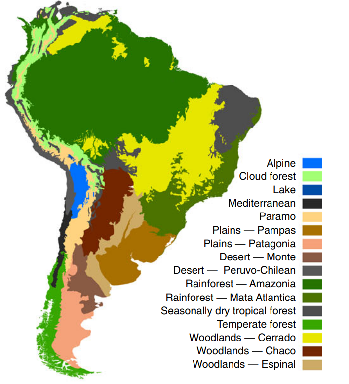 The South American continent divided into vegetation biomes
