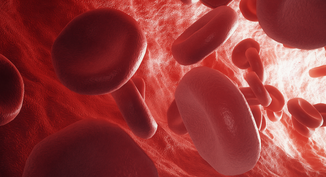 Muscle Pain and Energy-Rich Blood: Cholesterol Medicine Affects the Organs Differently